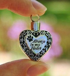Pet Cremation Jewelry - Pendant Urn for Ashes - Always in My Heart Paw Print Cat Dog Loss Memorial Gift Dog Jewelry, Charm Jewelry, Pendant Jewelry, Pet Cremation, Cremation Jewelry, Cat Memorial, Memorial Gifts, My Heart, Heart Ring