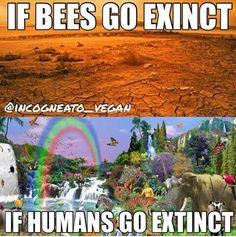 #VeganHumor *Go ExTinct