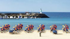 Read about the top things to do in Fuerteventura. With a First Choice holiday there are plenty of great activities designed for everyone. Stuff To Do, Things To Do, First Choice, Canary Islands, Places Ive Been, Costa, Holidays, Adventure, Beach