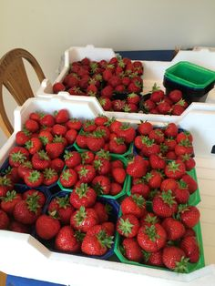 Jordbærsommer