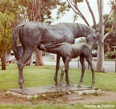 I have wedding photos taken in front of this horse and foal sculpture in Scone, Australia.  Not sure why I thought it was a good idea at the time.