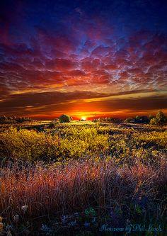 Splendiferous | Flickr - Photo Sharing!