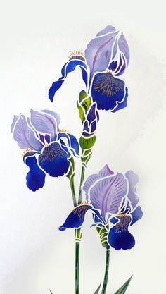 Exquisite large 2 sheet flower stencil The Large Agapanthus Stencil - based on Henny's closely observed drawings of the beautiful agapanthus flower. The Large Agapanthus Stencil perfectly captures the stately elegance of the Agapanthus (African Lily) in full bloom. This design is perfect for creati