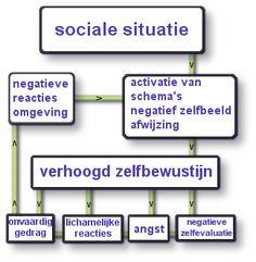schema sociale angst