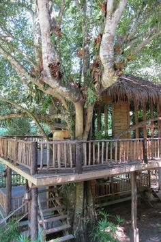 DreamCaught houses, Chaing Mai, Thailand This Chiang Mai treehouse might look all rickety and rustic, but that tree stabbing through the deck floor also doubles as a cocktail table, where you can rest your beverage of choice while enjoying the WiFi. Read more at http://matadornetwork.com/life/23-houses-built-into-nature-pics/#J1Ur3BWMzymidl8l.99