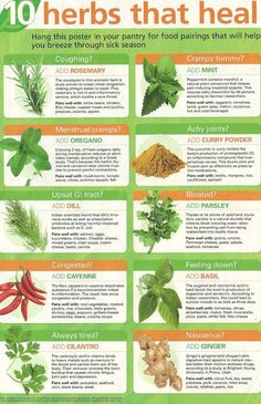 Skinny Diva Diet: Infographic: 10 Herbs That Heal
