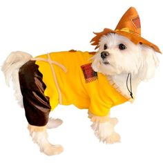 I pinned this Scarecrow Dog Costume from the Halloween Tricks & Treats event at Joss and Main!
