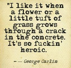 I like it when a flower or a little tuft of grass grows through a crack in the concrete. It's so fuckin' heroic. George Carlin