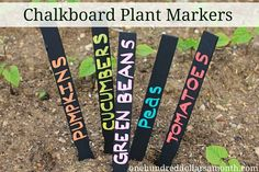 If you have a few paint sticks laying around... they make great garden markers.