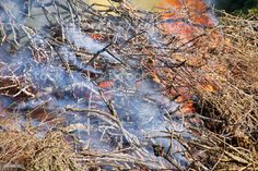 Controlled Fire Burn Off in Rural Scene Controlled Fire Burn Off in a Rural Scene. Climate Change Stock Photo Video Image, Scene Photo, Feature Film, Photo Illustration, Image Now, Agriculture, Climate Change, Royalty Free Images, Burns