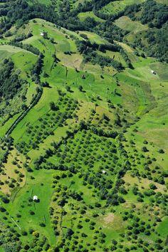 "Repülés a ""Nagy Zöld"" felett Golf Courses, River, Outdoor, Outdoors, Outdoor Games, The Great Outdoors, Rivers"