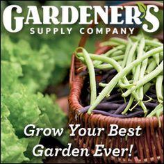 Best Mosquito Repelling Plants-Gardener's Supply Company