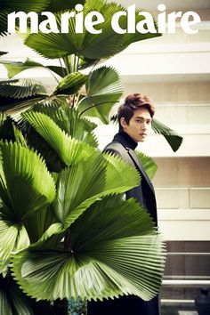 Lee Jong Hyun .  Ok this is sad but as da garden fanatic the plant is most interesting.  In this pic. Only.