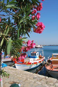 ahhh someone take me back to Greece pleeeeeease :) Greece Holiday, Samos, Greece Islands, Parthenon, Flowers Nature, Ancient Greece, Mykonos, Outdoor Travel, Athens