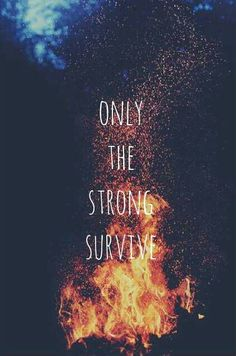 Only the strong survive - McFly