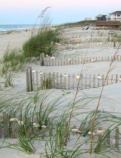 Shell Fences St. George Island, FL : beachblissliving