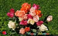 beautiful, wallpaper, wallpapers, roses, valentine, widescreen