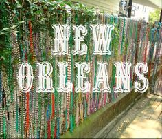 Discovering New Orleans on a Budget