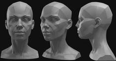 planes of the head Glenn Vilppu and Eric Michael Wilson Facial Anatomy, Head Anatomy, Human Anatomy Drawing, Anatomy Art, Geometric Shapes Art, Anatomy Sculpture, Drawing Heads, Sculpture Head, Anatomy For Artists