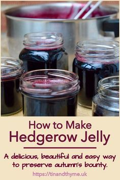 A glorious ensemble of whatever edible fruits you can forage. It's a delicious, beautiful and easy way to preserve autumn's bounty. Hedgerow jelly can include crab apples, blackberries, hawthorn berries, rosehips, sloes and so much more. #TinandThyme #HedgerowJelly #ForagedFoods #AutumnRecipe #preserves Jelly Recipes, Jam Recipes, Side Dish Recipes, Sweet Recipes, Dessert Recipes, Cooking Recipes, Vegan Recipes, Sloe Berries, My Favorite Food