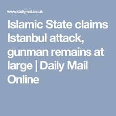 Islamic State claims Istanbul attack, gunman remains at large   Daily Mail Online