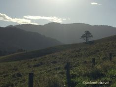 Between Murwillumbah NSW and Currumbin QLD the landscape is beautiful.                                           Photo by jadoretotravel