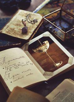 https://www.behance.net/gallery/44315113/hogwarts-notebooks-cinemagraphs
