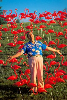 Don Featherstone, Inventor of the Pink Flamingo (in Plastic), Dies at 79 - The New York Times