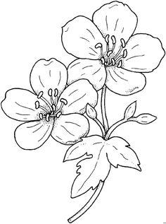 Blumengemischt_HFB-0072 (521x700, 46Kb)