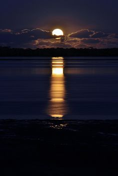 The wind has blown a warm yellow moon up over the sea; a bulbous moon, which sprouts in the soiled indigo sky, and spills bright winking petals of light on the quivering black water. Beautiful Moon, Beautiful World, Beautiful Places, Beautiful Pictures, Beautiful Scenery, Shoot The Moon, Moon Pictures, Time Pictures, Blue Moon