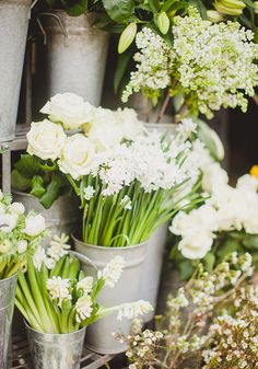 A bevy of white blooms, via madisonhshapiro
