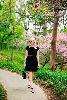 Tibi Cotton Poplin Dress | The Style Scribe
