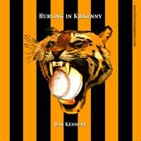 Kilkenny's beloved hurling team is black & gold, just like the Steeler's! This link leads to a CD of poetry by Dan Kennedy including a tribute to Hurling in Kilkenny. My Favorite Image, My Heritage, My Passion, Travel Posters, Celtic, Ireland, Irish, Football, History