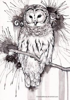 Owl by ChristinaMandy.deviantart.com on @deviantART