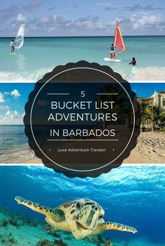 5 Adventures For Your Barbados Bucket List - Luxe Adventure Traveler