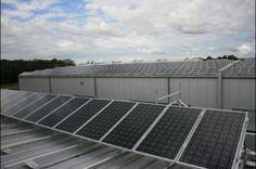 Location:Germany Power Output: 52 kW 3 Trannergy TRI017KTL; Monitoring System: Solar-Log;