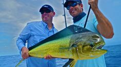 Bass 2 Billfish Sweepstakes with VISIT FLORIDA, Lipton and Sixt rent-a-car