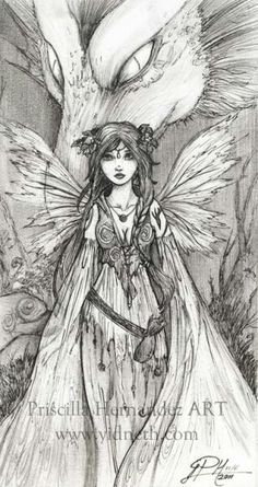 fairy and dragon fairy coloring pagesadult