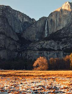 Yosemite National Park 2012. Augusta Weedon.