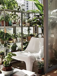 via at rainy grey days like today this beautiful inside urban jungle seen at livet hemma - with one of my favorite Ikea design. Ikea Plants, Indoor Plants, Porches, Ikea Ps, Decoration Plante, Plant Shelves, Vivarium, Jungles, Houseplants