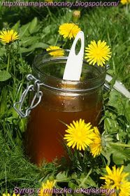 Home Remedies, Natural Remedies, Slow Food, Simple Syrup, Preserves, Dandelion, Food And Drink, Herbs, Homemade