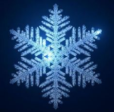 Tons of winter crafts