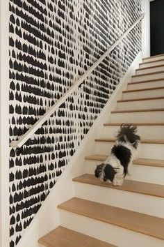 stairwell // Contemporary Staircase by Lynne Parker Designs, Wallpaper: Queen of Spain in black, Schumacher (also in silver) Wallpaper Staircase, Home Wallpaper, Staircase Walls, Wallpaper Ideas, Wallpaper In Hallway, Accent Wallpaper, Staircase Remodel, Staircase Ideas, Black And White Wallpaper
