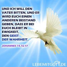 Lebe mit Gott! Tägliche Andachten zur Ermutigung im Glauben.