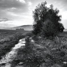 Krajina u Neveklova