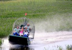 Air Boating the Everglades - Trails of Hats'n Hospitalitea
