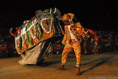 Boi Bumba ou Bumba-meu-Boi é uma dança do folclore popular brasileiro com personagens que parecem touro e toureiro. Muito brilho, cor e trabalho artesanal compõe o figurino utilizado  pelos grupos espalhados pelo Brasil,