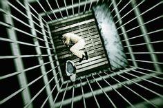Austrálčania možno celkom zmenia náš postoj k vine a trestu… Neuroveda nie je len nejaké teoretické skúmanie mozgu – má a bude mať obrovské dôsledky na celý náš svet. A to v mnohých oblastiach. Austrálsky neurovedec David Eagleman verí, že jeho odbor môže úplne zmeniť spôsob, akým už tisíce rokov vykonávame tresty. Navrhuje, že namiesto toho, aby sme zločinca zatvárali za múry kriminálu, mali by sme sa sústrediť na to, aby sme upravili ich mozgy. A to tak, aby už ďalšiu trestnú činnosť…