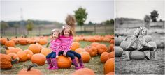 pumpkin patch family photo session