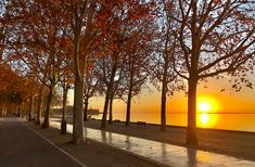 Október utolsó napkeltéje Balatonfüreden | CsodalatosBalaton.hu Celestial, Sunset, Outdoor, Outdoors, Sunsets, Outdoor Games, The Great Outdoors, The Sunset